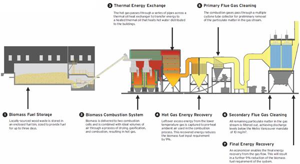 How does biomass combustion work chain for power