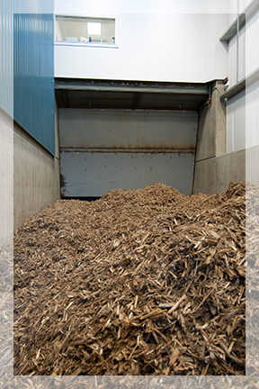 Corix Dockside Green Woody Biomass